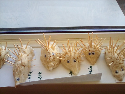1__We_made_our_very_own_hedgehogs_today_out_of_salt_dough__We_had_so_much_fun_we_may_have_got_a_little_dusty_from_the_flour__Oops__Sorry_
